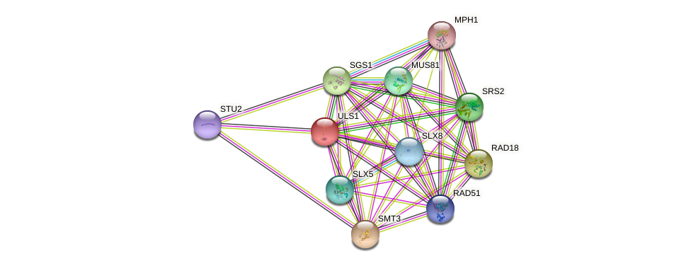 ULS1 protein (Saccharomyces cerevisiae) - STRING interaction network