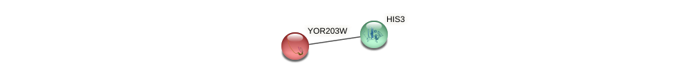 YOR203W protein (Saccharomyces cerevisiae) - STRING interaction network