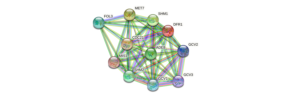 DFR1 protein (Saccharomyces cerevisiae) - STRING interaction network