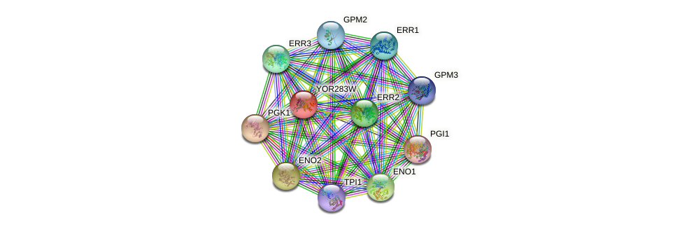 YOR283W protein (Saccharomyces cerevisiae) - STRING interaction network