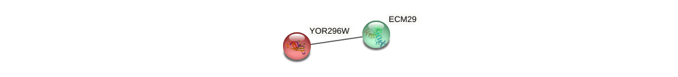 YOR296W protein (Saccharomyces cerevisiae) - STRING interaction network
