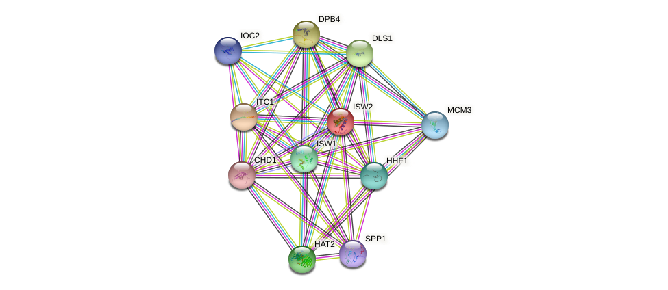 ISW2 protein (Saccharomyces cerevisiae) - STRING interaction network