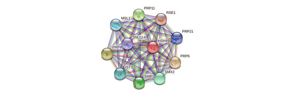 HSH49 protein (Saccharomyces cerevisiae) - STRING interaction network