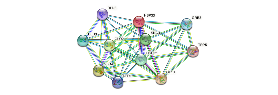 HSP33 protein (Saccharomyces cerevisiae) - STRING interaction network