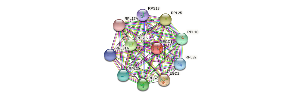 EGD1 protein (Saccharomyces cerevisiae) - STRING interaction network