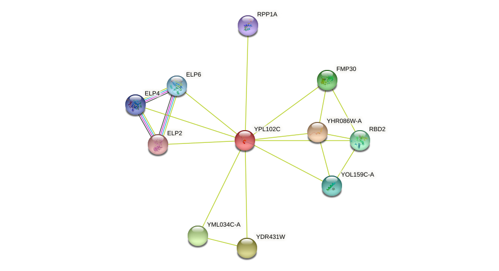 YPL102C protein (Saccharomyces cerevisiae) - STRING interaction network