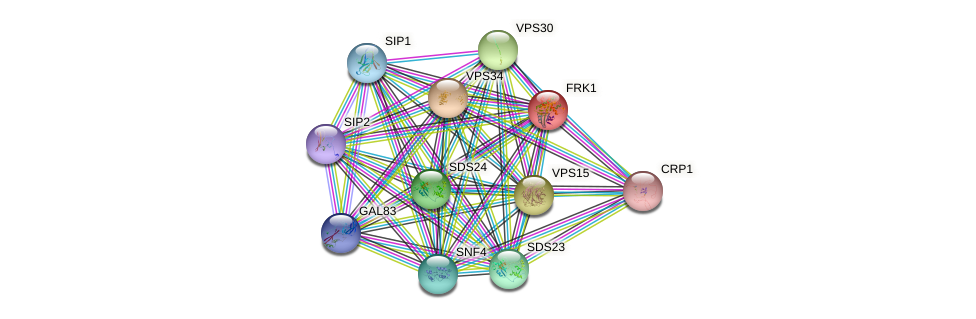 FRK1 protein (Saccharomyces cerevisiae) - STRING interaction network