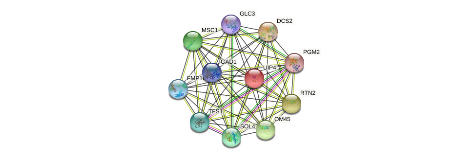 UIP4 protein (Saccharomyces cerevisiae) - STRING interaction network