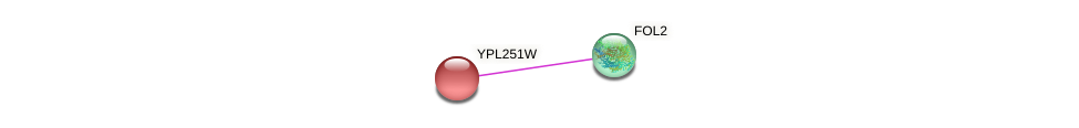YPL251W protein (Saccharomyces cerevisiae) - STRING interaction network