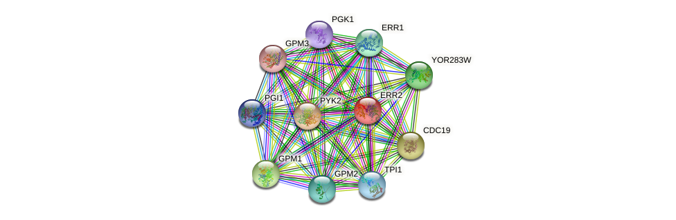 ERR2 protein (Saccharomyces cerevisiae) - STRING interaction network