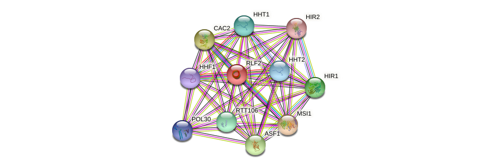 RLF2 protein (Saccharomyces cerevisiae) - STRING interaction network