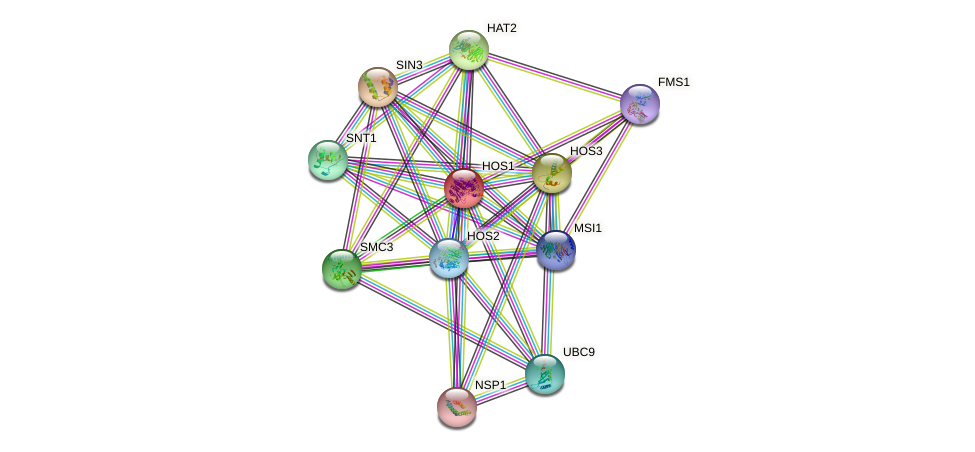 HOS1 protein (Saccharomyces cerevisiae) - STRING interaction network
