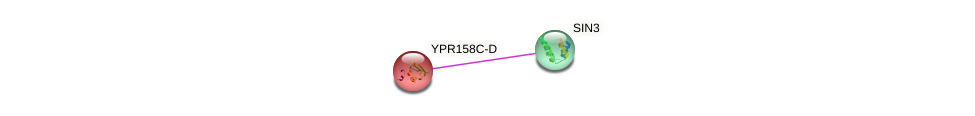 YPR158C-D protein (Saccharomyces cerevisiae) - STRING interaction network