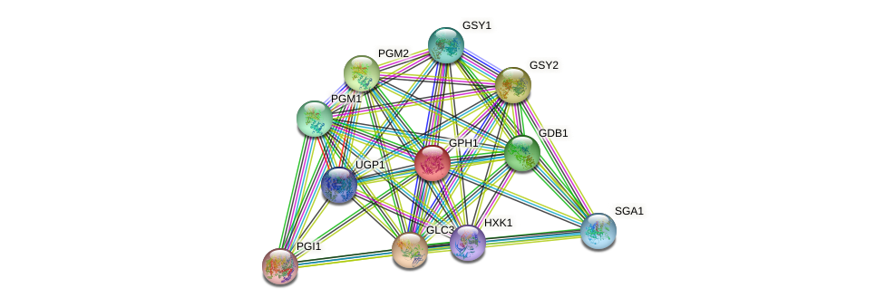 GPH1 protein (Saccharomyces cerevisiae) - STRING interaction network