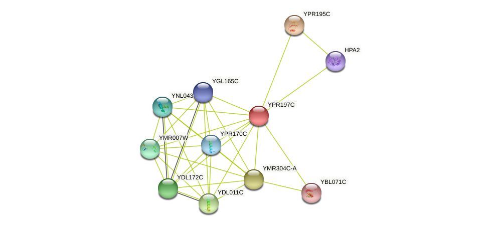 YPR197C protein (Saccharomyces cerevisiae) - STRING interaction network