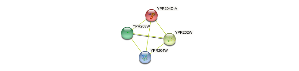 YPR204C-A protein (Saccharomyces cerevisiae) - STRING interaction network