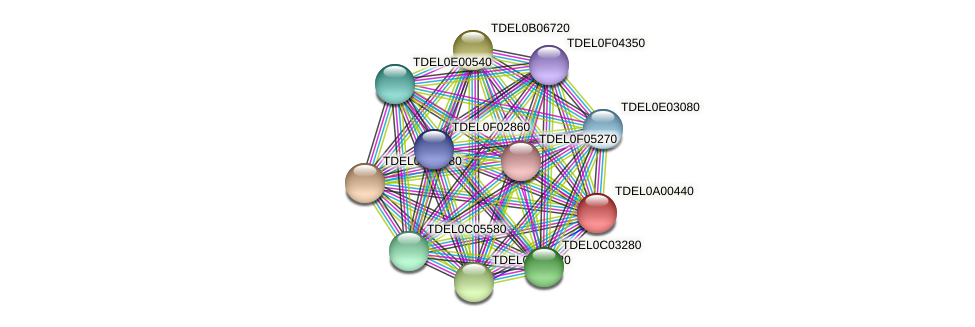 XP_003678587.1 protein (Torulaspora delbrueckii) - STRING interaction network