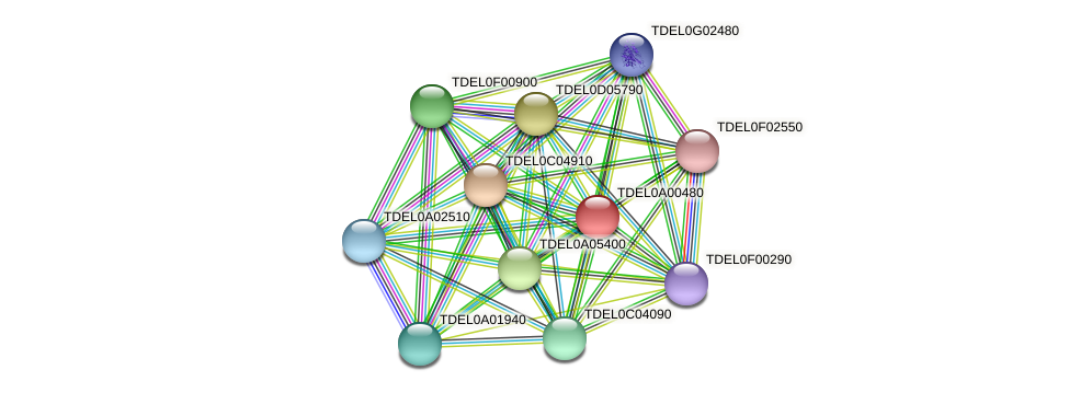 XP_003678591.1 protein (Torulaspora delbrueckii) - STRING interaction network