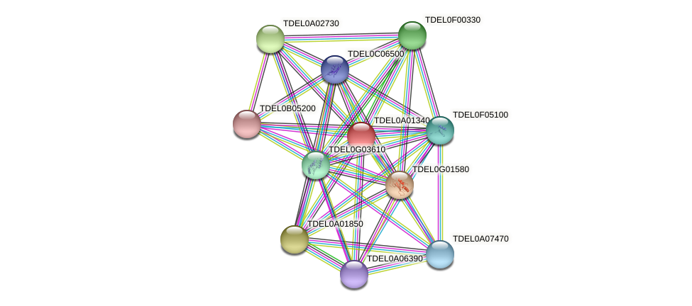 XP_003678677.1 protein (Torulaspora delbrueckii) - STRING interaction network