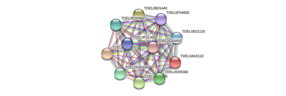 XP_003678694.1 protein (Torulaspora delbrueckii) - STRING interaction network
