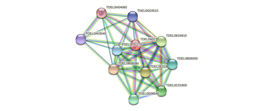 XP_003678759.1 protein (Torulaspora delbrueckii) - STRING interaction network