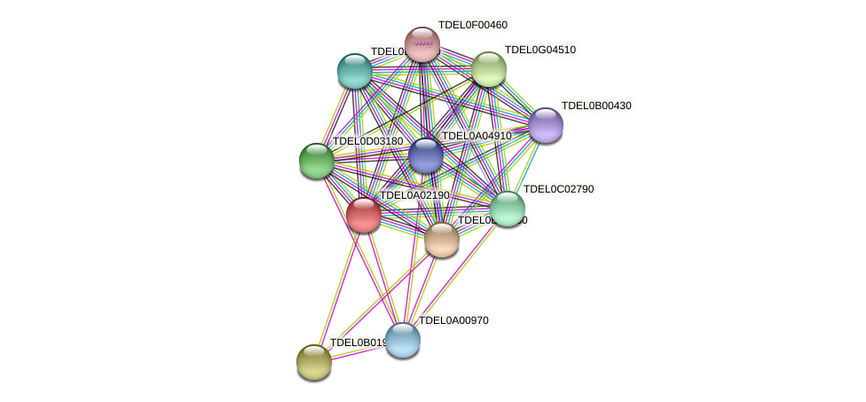 XP_003678762.1 protein (Torulaspora delbrueckii) - STRING interaction network