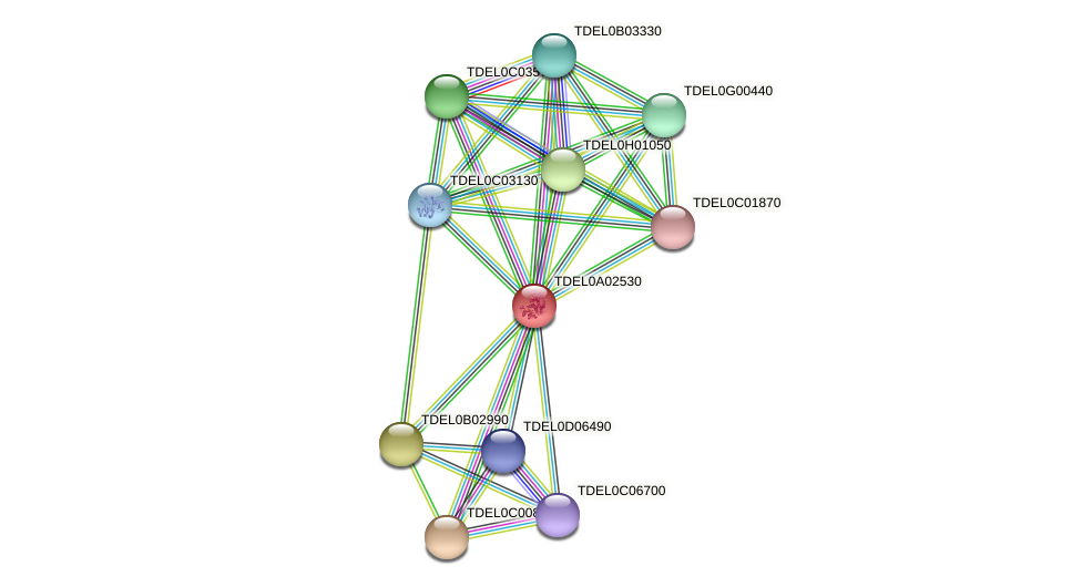 XP_003678796.1 protein (Torulaspora delbrueckii) - STRING interaction network
