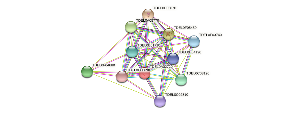 XP_003678815.1 protein (Torulaspora delbrueckii) - STRING interaction network