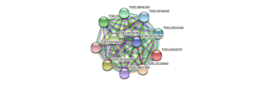 XP_003678880.1 protein (Torulaspora delbrueckii) - STRING interaction network