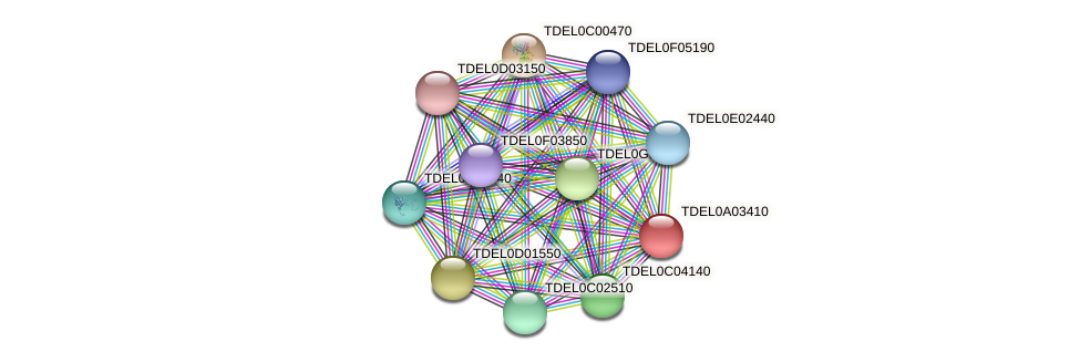XP_003678884.1 protein (Torulaspora delbrueckii) - STRING interaction network
