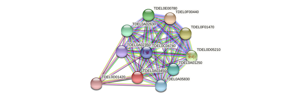 XP_003678888.1 protein (Torulaspora delbrueckii) - STRING interaction network