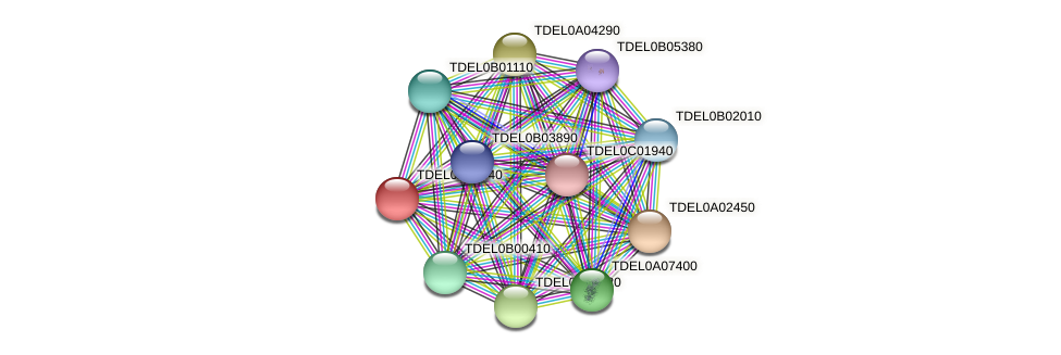 XP_003678897.1 protein (Torulaspora delbrueckii) - STRING interaction network