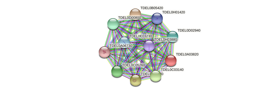 XP_003678925.1 protein (Torulaspora delbrueckii) - STRING interaction network