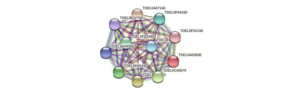 XP_003678936.1 protein (Torulaspora delbrueckii) - STRING interaction network
