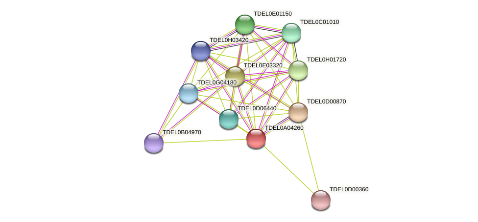 XP_003678969.1 protein (Torulaspora delbrueckii) - STRING interaction network