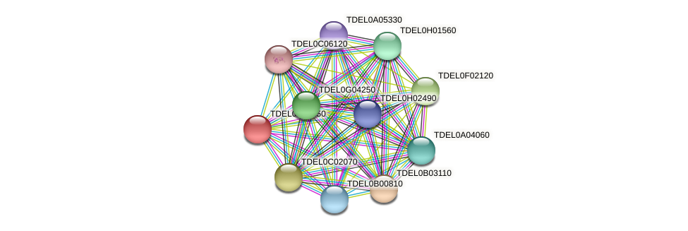 XP_003678978.1 protein (Torulaspora delbrueckii) - STRING interaction network