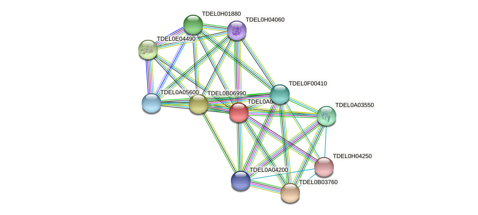 XP_003678980.1 protein (Torulaspora delbrueckii) - STRING interaction network
