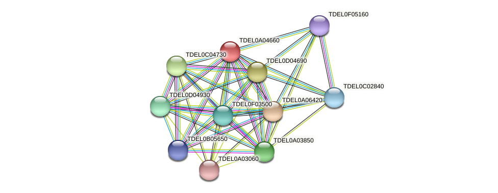 XP_003679009.1 protein (Torulaspora delbrueckii) - STRING interaction network