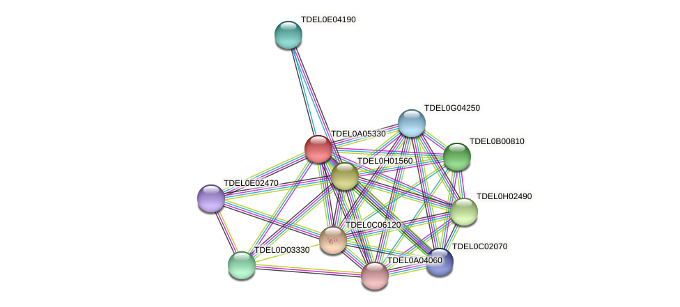 XP_003679076.1 protein (Torulaspora delbrueckii) - STRING interaction network