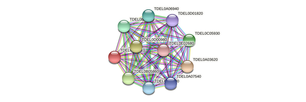 XP_003679194.1 protein (Torulaspora delbrueckii) - STRING interaction network