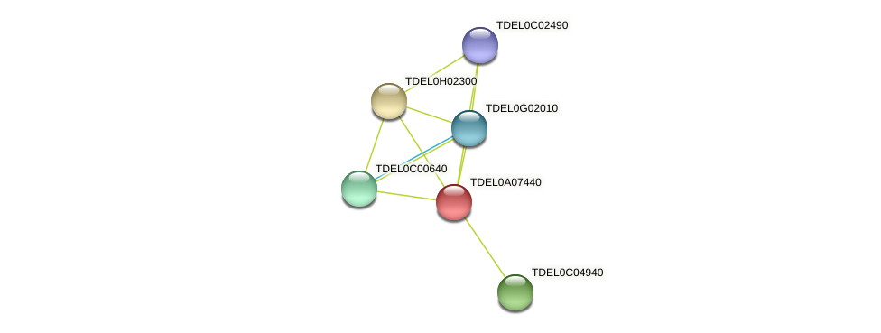 XP_003679287.1 protein (Torulaspora delbrueckii) - STRING interaction network