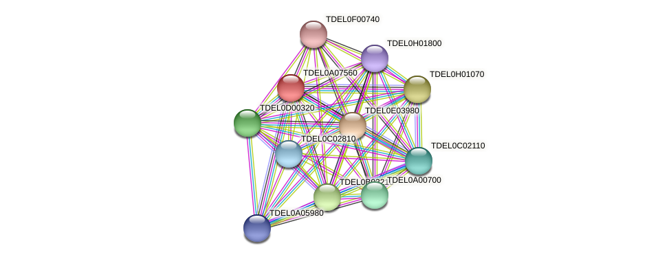 XP_003679299.1 protein (Torulaspora delbrueckii) - STRING interaction network