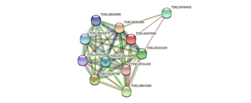 XP_003679303.1 protein (Torulaspora delbrueckii) - STRING interaction network