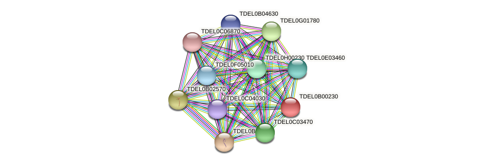XP_003679363.1 protein (Torulaspora delbrueckii) - STRING interaction network