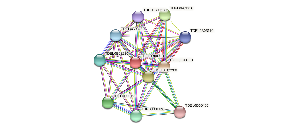 XP_003679371.1 protein (Torulaspora delbrueckii) - STRING interaction network