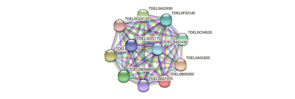 XP_003679375.1 protein (Torulaspora delbrueckii) - STRING interaction network