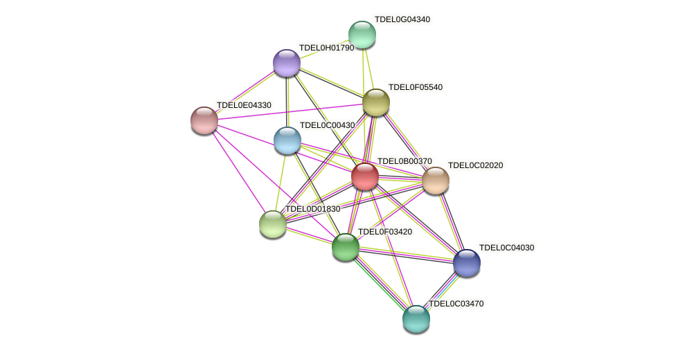 XP_003679377.1 protein (Torulaspora delbrueckii) - STRING interaction network