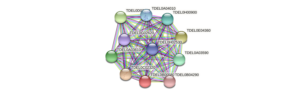 XP_003679398.1 protein (Torulaspora delbrueckii) - STRING interaction network