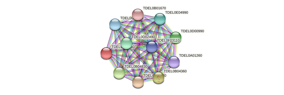XP_003679415.1 protein (Torulaspora delbrueckii) - STRING interaction network