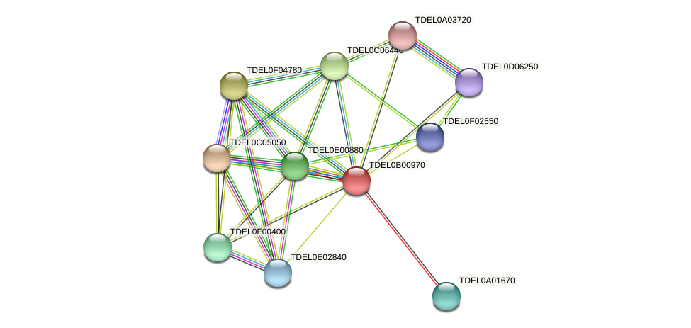 XP_003679437.1 protein (Torulaspora delbrueckii) - STRING interaction network
